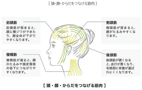 【(小顔ミスト)SBCP生ミネラルミスト】女優やモデル愛用のドクターズコスメ